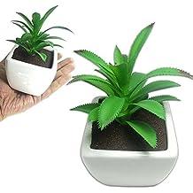 Suculenta Planta Artificial Cacto Ornamentacao Vaso Festa (BSL-SH-2)