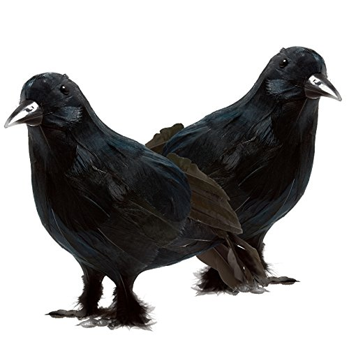 Prextex Realistic Looking Halloween Decoration Birds Black Feathered Crows Halloween Prop Décor (2-pack)]()
