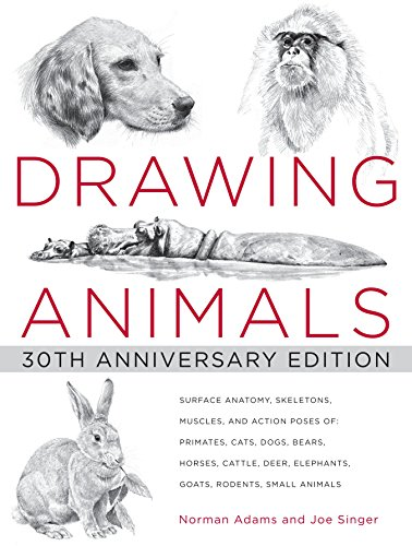Drawing Animals: 30th Anniversary Edition
