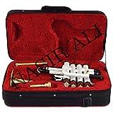 Nasir Ali PiTr-02, Piccolo Trumpet, Bb, White