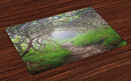 Appalachian Trail Doormats Welcome Entrance Mat Non-Slip Backing, Foggy Tunnel of Floral Branches in Blue Ridge Mountains, Indoor Bath Mat Shoes Scraper Floor Mat, 18'' x 30''