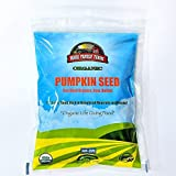 Mauk Family Farms Organic Pumpkin Seeds, 16 ounce Bag