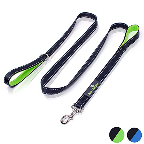 Heavy Duty Dog Leash - 2 Handles by Paw Lifestyles - Padded Traffic Handle For Extra Control, 7ft Long - Perfect For Medium to Large Dogs