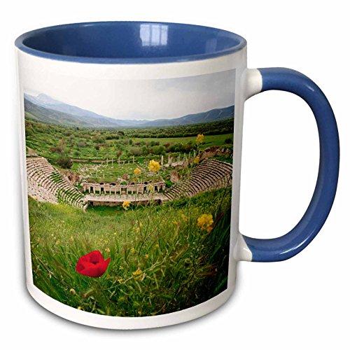 nt - Ali Kabas - Ruins - Amphitheater in Aphrodisias, Aydin, Turkey - 15oz Two-Tone Blue Mug (mug_187095_11) ()