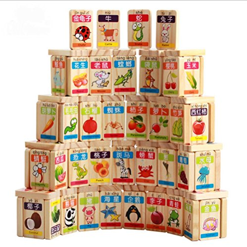 Children's Wooden Domino Toys Educational for kids Learning Recognize / Identify Fruits and Animals, Smooth Surface and Rounded Corners 100pcs (Toddler Language Development compare prices)