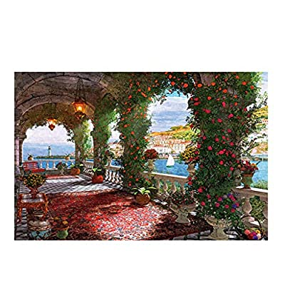 CUEYU Jigsaw Puzzles 1000 Pieces Puzzles for Adults,1000 Pieces Landscape Painting Jigsaw Puzzles for Adults & Teens,Hardcover Children Educational Games Toys Jigsaw Floor Puzzle (B): Toys & Games