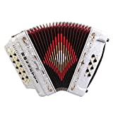 Rossetti 3412 34 Button 12 Bass 3 Switch Accordion (White)