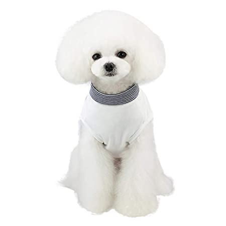 Gusspower-ropa mascotas, Chaleco Camiseta de Transpirable ...