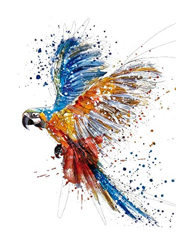 Colourful Parrot Art A4 poster print
