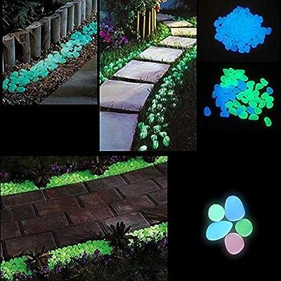 Appearancees - Piedras Luminosas para decoración de Jardines, Patios, Jardines, Jardines, Patios, Jardines, Patios (30 Unidades), Color Blanco: Amazon.es: Jardín