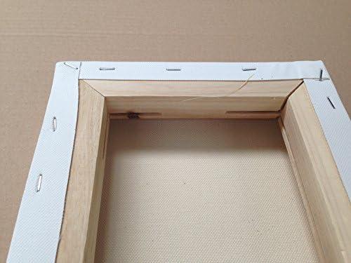 Malgut 5er Set 3D Keilrahmen 20x20cm