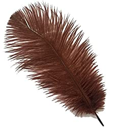 Sowder 20pcs Natural 10-12inch(25-30cm) Ostrich Feathers Plume Wedding Centerpieces Home Decoration(brown)