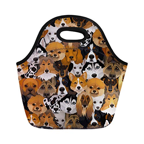 Semtomn Lunch Tote Bag Bernese Dogs Different Breeds Boxer Corgi Mountain Puppy Afghan Reusable Neoprene Insulated Thermal Outdoor Picnic Lunchbox for Men Women
