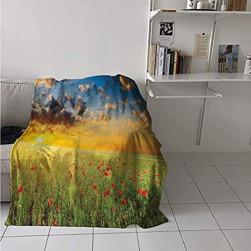 Maisi Lightweight Blanket, Freshening Sky View with Grass and Poppies Against Sunset Horizon Countryside, Throw Blanket for Kids 50x30 Inch Red Green Blue