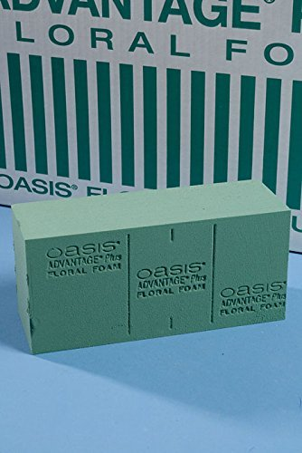 Oasis Advantage Plus Floral Foam (Case of 24 Bricks)