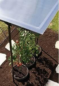 Gartenwelt Riegelsberger Bellissa 90450 Techo para plantas y ...