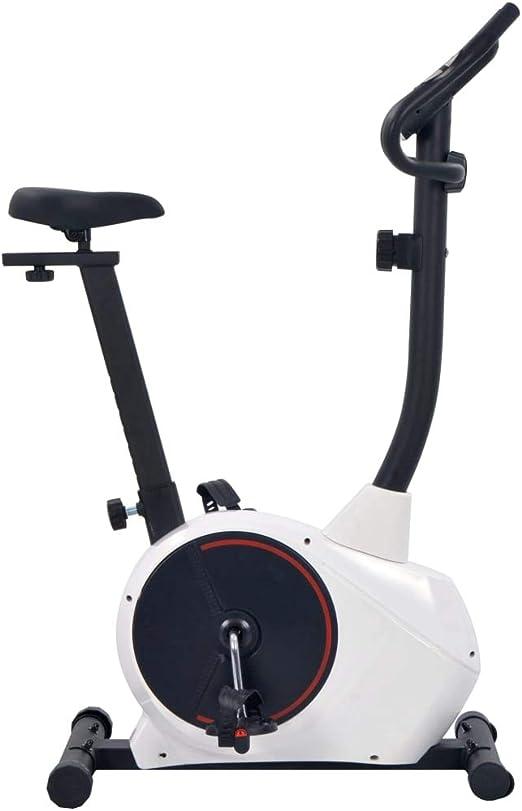 Festnight Bicicleta Estática Magnética con Pulsómetro Pantalla LCD ...