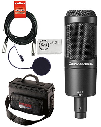 Audio-Technica AT2050 Multi-Pattern Condenser Microphone Bundle with Gear Bag, Pop Filter, XLR Cable, and Austin Bazaar Polishing Cloth
