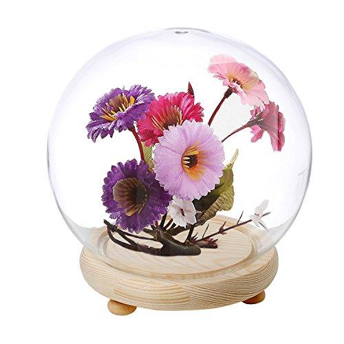 vase display case - 2