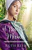 A Woodland Miracle (The Amish Wonders Series)
