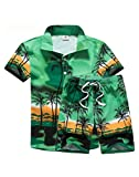Vogstyle Men's Short Sleeve Shirt and Shorts Floral Beach Casual Shirt Suit XL