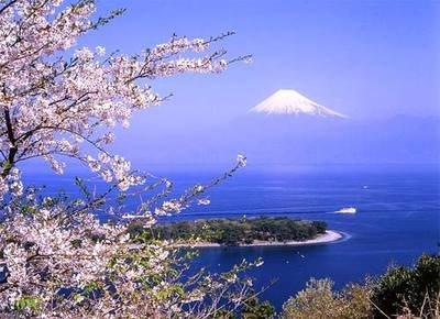 ししゅう糸 DMC糸 クロスステッチ刺繍キット 布地に図柄印刷 富士山桜 (BB) B079WV7RP4 BB