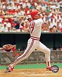 "Chris Sabo Cincinnati Reds MLB Action Photo (Size: 8"" x 10"")"