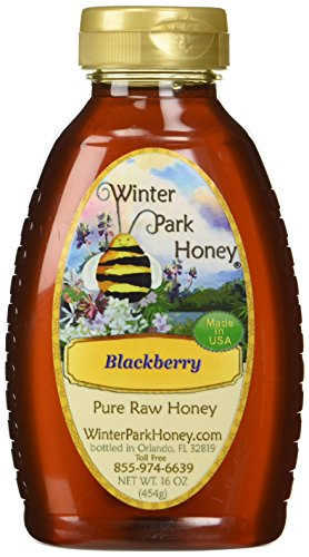 Winter Park Honey Blackberry Honey (Pure Natural Raw Honey) 16oz