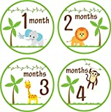 Little LillyBug Designs - Monthly Baby Stickers - Gender Neutral - Safari Animals - 1-12 Months