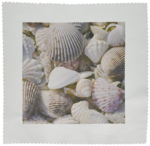 3dRose qs_94909_1 USA, Fl, Sanibel, Seashells Washed Up on Beach-Us45 Rti0045-Rob Tilley-Quilt Square, 10 by 10-Inch