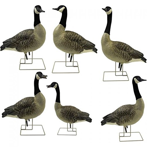 Image of AvianX AX Goose Fusion Honker Decoy (6 Pack), Grey Decoys