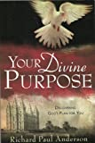 Your Divine Purpose : Discovering God's Plan for You, Anderson, Richard P., 1598115189