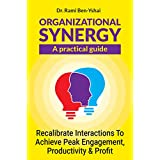 Organizational Synergy - A Practical Guide: Recalibrate Interactions to Achieve Peak Engagement, Productivity & Profit