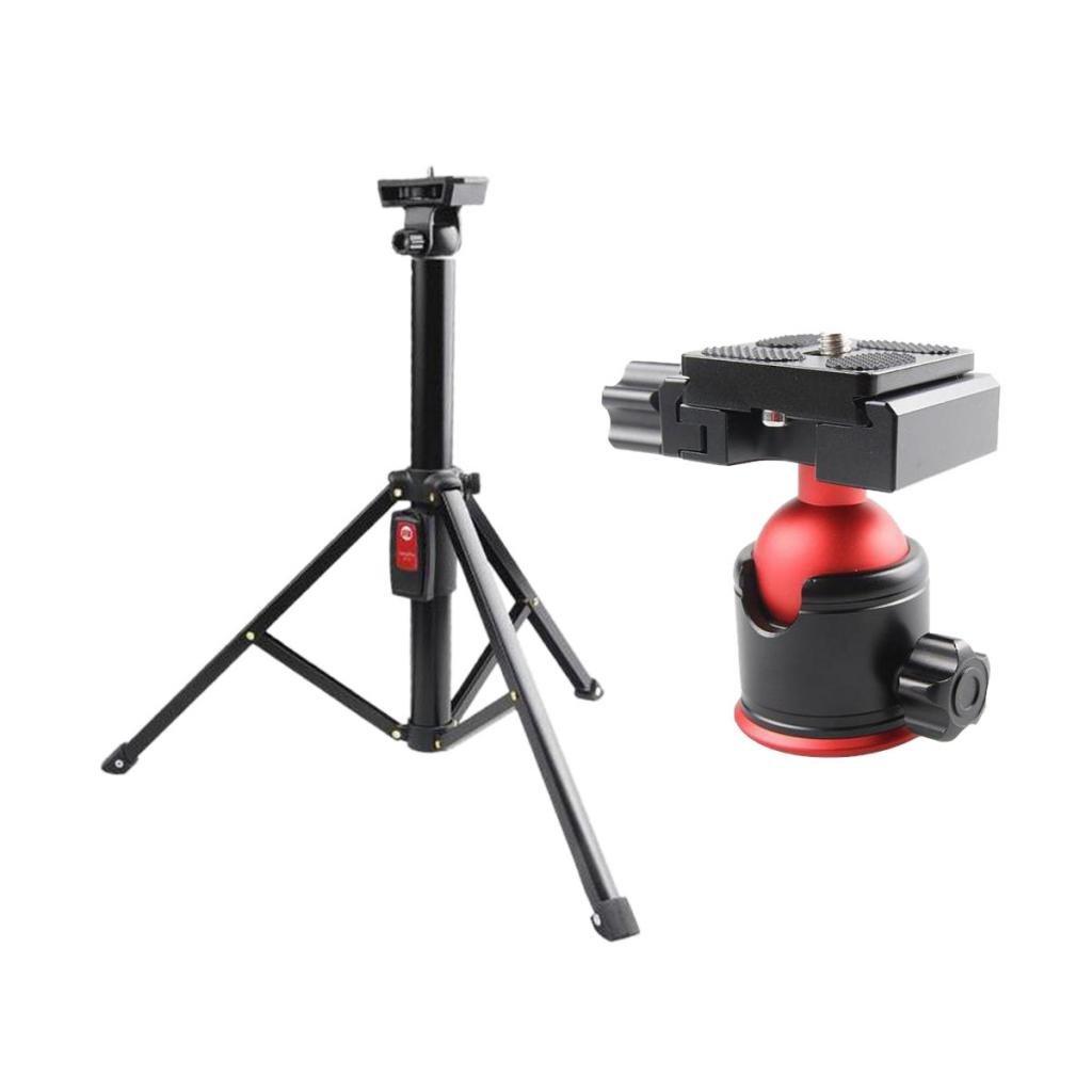 肌触りがいい kesoto GoPro + Hero Sjcamスポーツカメラ用三脚ボールヘッドマウントスタンド ホットシューホルダー 1/4インチねじ 1/4インチねじ + Hero 卓上電話ライブビデオスタンドブラケット B07D5WGTSX, コナンシ:6e69aed8 --- movellplanejado.com.br