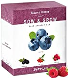 Nature's Blossom Fruit Growing Kit. Grow 4 Types of Berries from Seed - Raspberries, Blueberries, Goji Berry, Blackberries. A Complete Beginners Set with All You Need to Start Your Own Garden