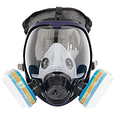 Complete Suit Trudsafe 6800 Painting Spraying Full Face Gas Chemical Mask Respirator, Dust Mask, FDA Tested, Two Kinds of Connectors, Good Tightness, Filters Included