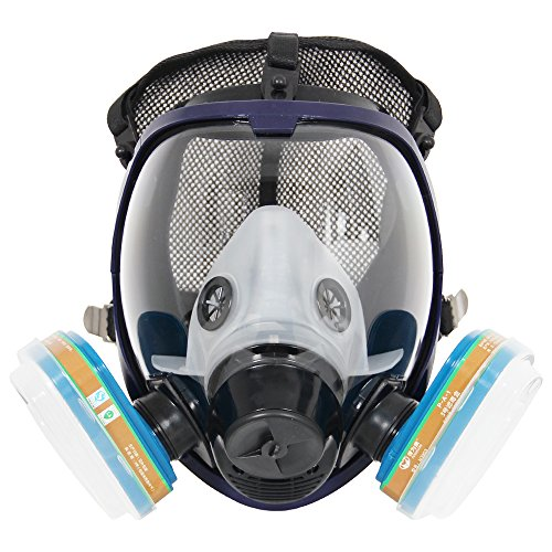 Complete Suit Trudsafe 6800 Painting Spraying Full Face Gas Chemical Mask Respirator, Dust Mask, FDA Tested, Two Kinds of Connectors, Good Tightness, Filters Included (Assembly Respirator Gas)