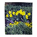 Semtomn-Flannel-Throw-Blanket-Shady-Grave-Stone-Burial-Care-The-Cemetery-Enclosure-Flowers-Soft-for-Bed-Sofa-and-Couch-60×80-Inches