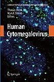 Human Cytomegalovirus, Shenk, Thomas E. and Stinski, Mark F., 3642445136