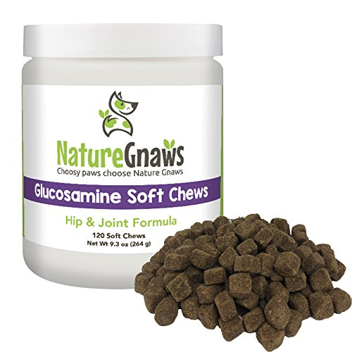 Nature Gnaws Glucosamine Soft Chews for Dogs - Extra Strength Condroitin & Omega 3 Fish Oil Formula for Hip & Joint Relief - 120 Bite Sized Treats