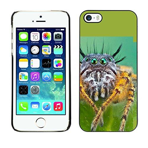Omega Case PC Polycarbonate Cas Coque Drapeau - Apple iPhone 5 / 5S ( Cool Spyder Eyes )
