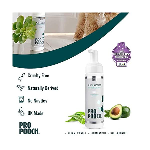 Pro Pooch Dry Shampoo For Dogs (200 ml) Quick Drying Waterless No Rinse Mousse. 3