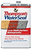 Thompson's TH.024101-16 Waterseal Clear Multi-Surface Waterproofer, gallon