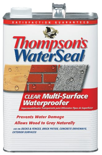 Thompson's TH.024101-16 Waterseal Clear Multi-Surface Waterproofer, gallon by Thompson's Water Seal