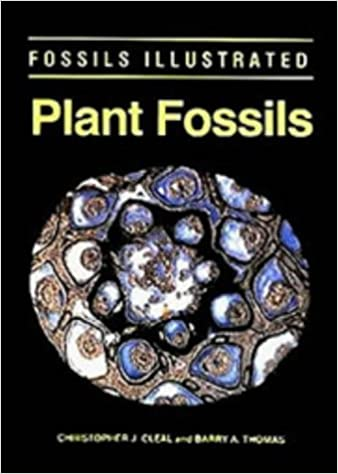 The History of Land Vegetation Plant Fossils