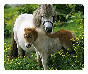The beauty of the landscape horse oblong mouse pad by customized Cases & Mousepads