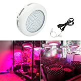 LED Grow Light, BEAMNOVA 300w Full Spectrum Hydroponic Systems, UFO Plant Grow Lights, for Hydropnic Indoor/Greenhouse Growing Veg and Flower For Sale