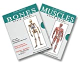 Muscle and Bone Combo Pak : Flash Cards, Flash Anatomy Staff, 1878576437