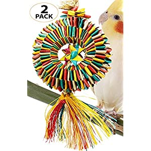Bonka Bird Toys 03373 Small Bird Tire Pk1 Pk2 Parrot cage Conure African Grey Amazon Forage chew Shred Foot Swing Perch Aviary pet Accessories Supply (Pk2 Small) 54