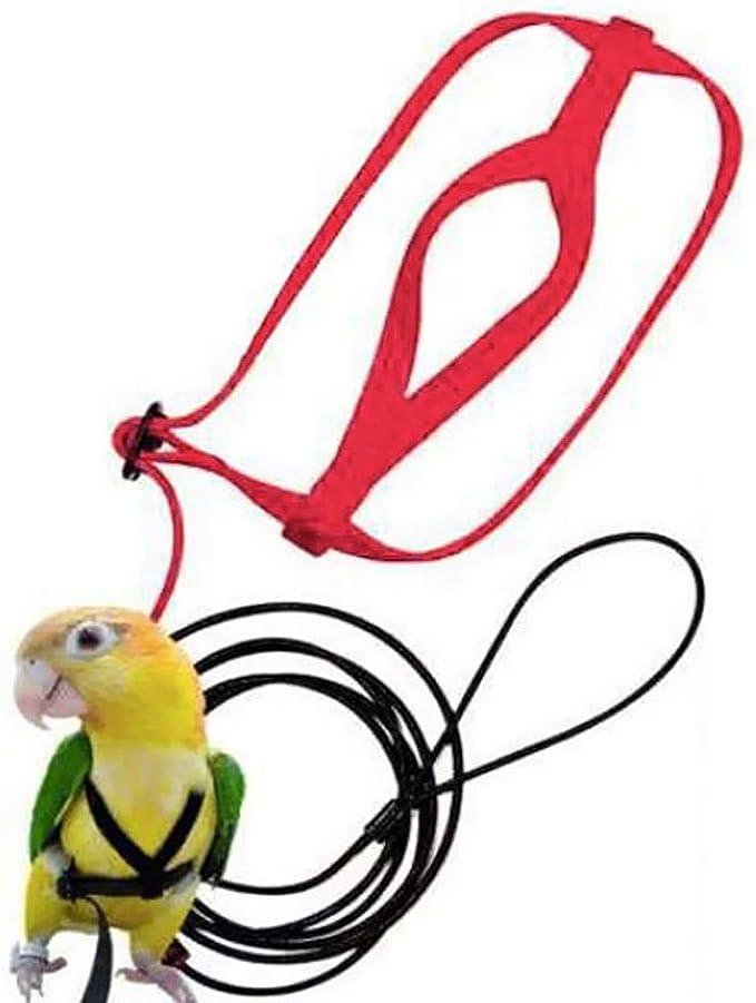 P Prettyia Amarillo Transportadora para Pájaros con Anti-mordida ...